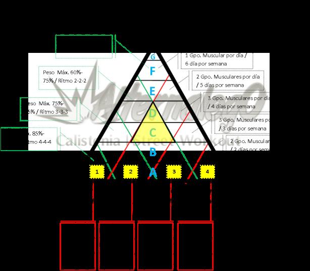 Grafica Relación frecuencia, intensidad y volumen, matriz de planeación y revisión de rutinas, alternalego.com, alternalego, imagen progresion hacia intensidad, PROGRESION NIVELES 0 Y 1