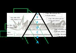 Grafica Relación frecuencia, intensidad y volumen, matriz de planeación y revisión de rutinas, alternalego.com, alternalego, imagen con lineas verdes