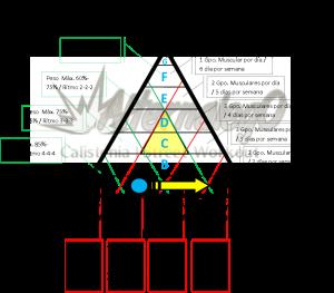 Grafica Relación frecuencia, intensidad y volumen, matriz de planeación y revisión de rutinas, alternalego.com, alternalego, imagen rutina nivel 0 principiantes flecha amarilla
