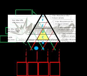 Grafica Relación frecuencia, intensidad y volumen, matriz de planeación y revisión de rutinas, alternalego.com, alternalego, imagen rutina nivel 0 principiantes