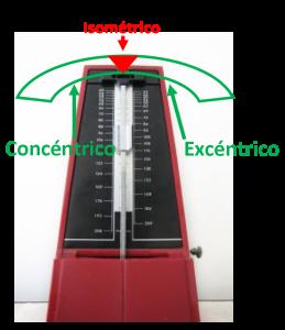 COMPONENTES REPETICION - METRONOMO