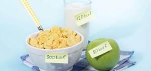 Calidad y cantidad de las calorías en la comida